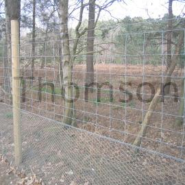 Stock Wire Fence