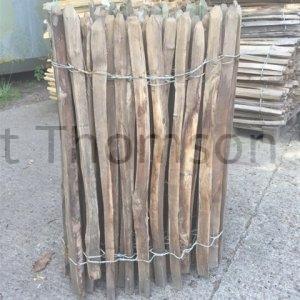 chestnut fencing 2